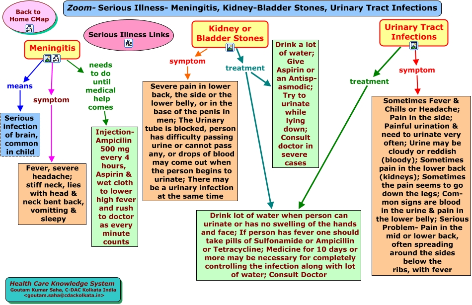 Zoom Serious 20Illness Meningitis Kidney 20Bladder 20Stones Urinary 20Tract 20Infection